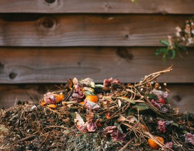 composting is a great way to fight climate change